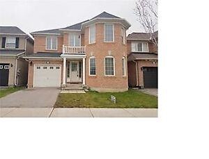 Four Bedrooms Semi-Detached House in Markham For Rent
