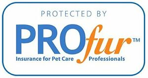 Barks and Recreation Professional Pet Services Peterborough Peterborough Area image 2