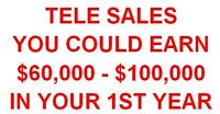 Serious Tele Sales Reps Earn Huge Income