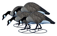 Higdon Decoy Sale! Alpha TruFeeder, Magnum Canada Full Body 4pk