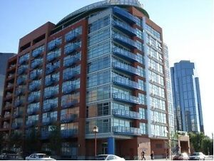 Beautiful One Bedroom Eau Claire Condo