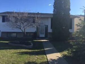 Exceptionally well-maintained, bright bi-level in Evansdale!