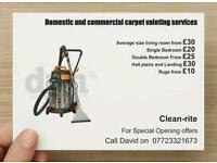 Professional carpet valeting
