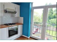Beautiful large spacious 1 bed flat in converted Victorian House
