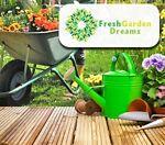 FreshGardenDreams
