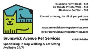 Professional Dog Walker & Cat Sitter Available 24/7