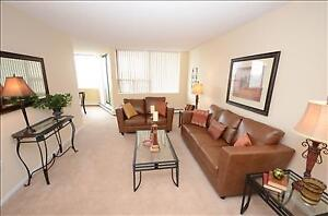 Renovated 1 bedroom apartment for rent, CALL TODAY!