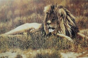 """Limited Edition Print - Cyril Cox - The Patriarch"""""""