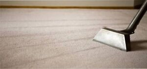 Carpet steam cleaning,upholstery Narre Warren Casey Area Preview