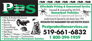 Affordable Pest Control Solutions London Ontario image 5