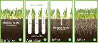 Lawn Aeration and Fertilization