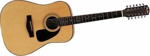 Fender 12-String Acoustic Guitar with Hard Case