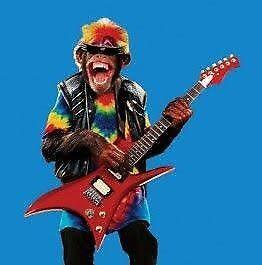 Wanted: Lead guitarist for originals hard rock /punk