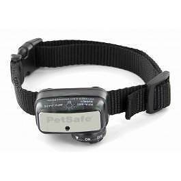 Small Dog Bark Collar Needed (Rescue/Emergency Care) Brisbane City Brisbane North West Preview