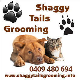 Shaggy Tails Grooming. Please TEXT.