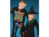 Find all you need in our festive range of Wholesale Halloween in this section