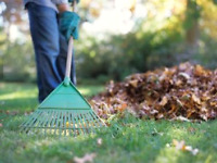 Spring cleanup and summer lawn care