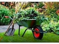 Gardening and Painting - Competitive Pricing