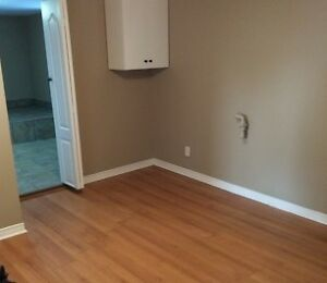 Spacious One Bedroom Basement Apartment