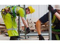 4x Labourers - Acton