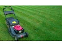 Grass and hedge cutting