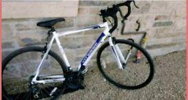Road bike Mint condition
