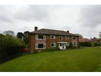 Flat - spacious with 2 bedrooms and large garage