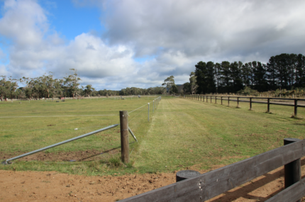 FOR SALE: Dashing Waters - Equine Lifestyle Property