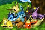 hudsorick pokemon more store