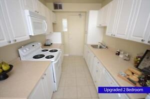 GREAT 1 bedroom apartment for rent minuted to the University! London Ontario image 5