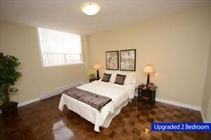 GREAT 1 bedroom apartment for rent minuted to the University! London Ontario image 6
