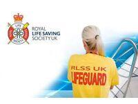 Lifeguard-Job wanted