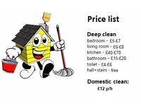 Domestic cleaning / End of tenancy full deep house cleaning