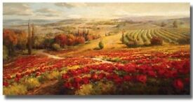 Red Poppy Panorama stretched canvas