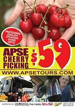 Cherry Picking 1 Day Tours $59 pp Sydney City Inner Sydney Preview