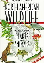 North American Wildlife : An Illustrated Guide to 2,000 Plants and Animals by...