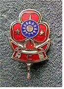 Girl Guide Metal Badges