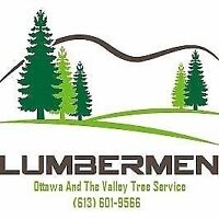 Tree Removal, Pruning, Stump Grinding and More!