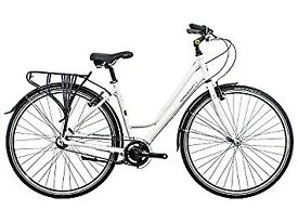 Pioneer 3 bicycle