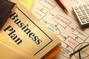 Business plans for funding purposes
