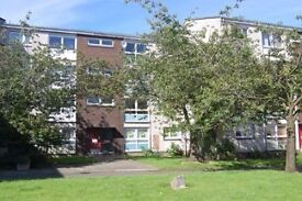 Large 2-bedroom unfurnished flat for rent in Hamilton