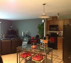 *Fully Furnished* 1 Bed/1Bath ~MOVE IN READY~ Strathcona County Edmonton Area image 1