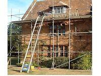 GEDA - (250 comfort) Ladder Hoist . Excellent Condition