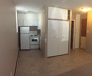 City Park-Bachelor Suite Spacious and Clean-Great Location/price