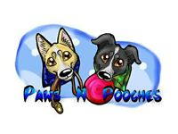 Paws N Pooches SOLO LUNCHTIME slot available