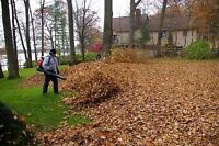Affordable Snow Removal Services Fall Leaves Yard Clean Ups