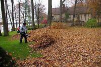Lawn Mowing , raking Leaves , Yard Clean Ups 902.880.7790