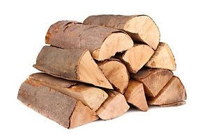 Wanted free firewood fire wood, lumber or tree tops Kitchener / Waterloo Kitchener Area image 1