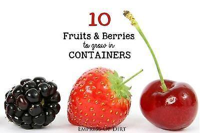Obst kannst Du auch im Blumenkasten anbauen!