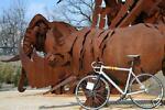 rhinos-bike-orama!!!